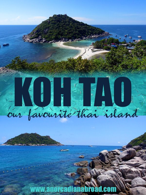 Koh Tao: Our Favourite Thai Island  Hiring a scooter