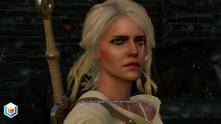 The Witcher 3 Wild Hunt Family Matters Main Quest Walkthrough – VGFAQ