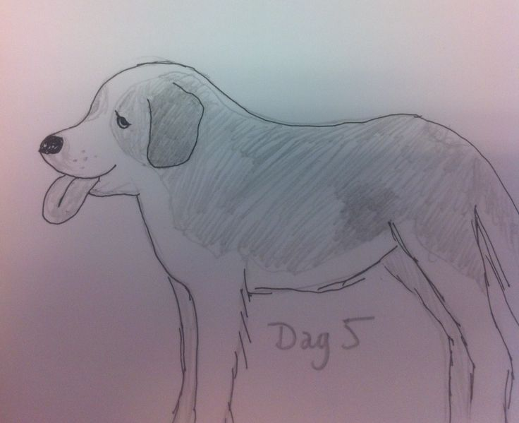 #Day5 - Doggy dog