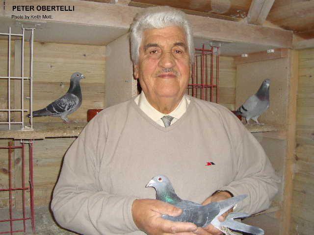 Pigeon fancier sutton