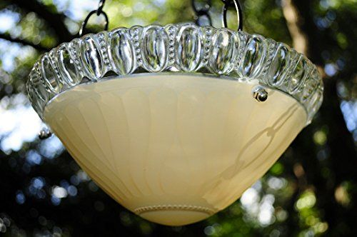 Backyard Birding  Vintage glass bird feeder - hanging bird bath Outdoor Living * This is an Amazon Associate's Pin. Detailed information can be found on the website by clicking  the VISIT button.