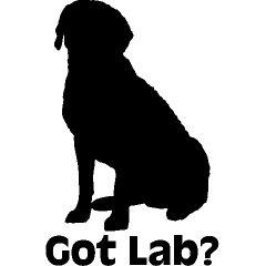 outline lab retriever labrador retrievers