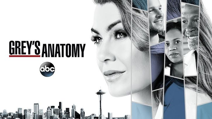 In celebration of the Grey's Anatomy 300th episode, Ellen Pompeo and Jesse Williams will be making some TV appearances.