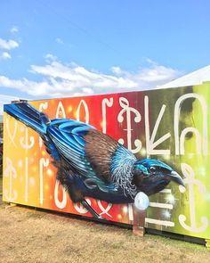 tui graffiti - Google Search