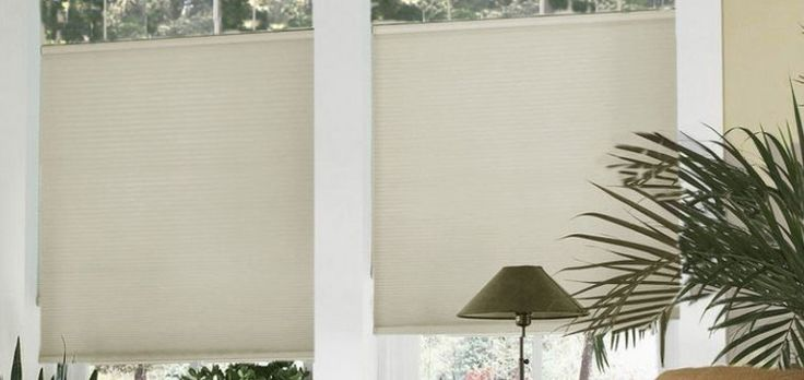yes pls!  Cordless Top Down Bottom Up Cell Shades Custom Blinds and Shades By SelectBlinds.com
