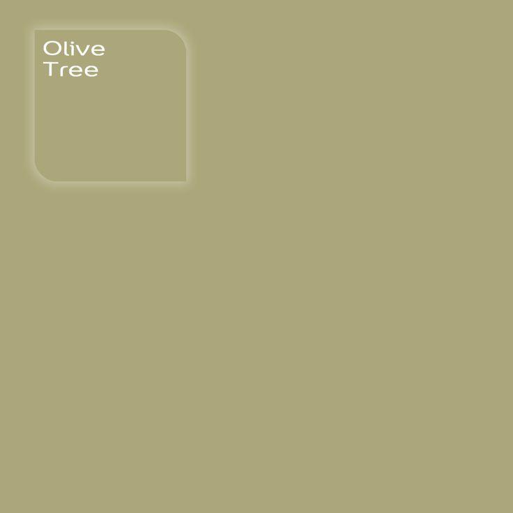 Flexa Creations kleur: Olive Tree. Klik op de foto om een Flexa Kleurstaal in deze kleur te bestellen. Vooraf de kleur op de muur in je kamer zien geeft vertrouwen.