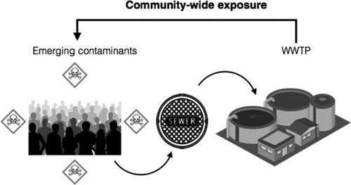 Liquid Chromatography–Tandem Mass Spectrometry Analysis of Biomarkers of Exposure to Phosphorus Flame Retardants in Wastewater to Monitor…
