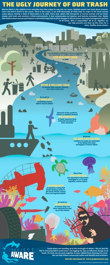 What is the impact of our plastic use on the ocean's animal life? A new infographic from Project AWARE sheds a bit of light on the sheer scale of the problem, and the incredible number of animals affected by our plastic problem. Project AWARE states that as much as 6 million tons of disposable goods enter the ocean every year, and that the animals that live in the water are greatly affected.