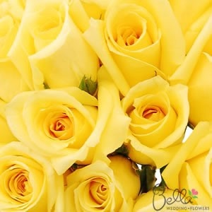 Yellow Roses are a gorgeous roses and one of the most popular roses for weddings. White are classic and elegant, and their large, full flower heads make beautifully luxurious wedding bouquets. As always, our white roses are shipped directly from the grower. Take advantage of our Free Shipping with your wholesale roses order! $49