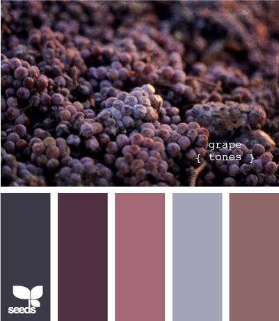 grape tones
