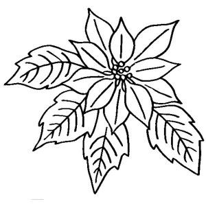 Poinsettia In Ceramics Coloring Page
