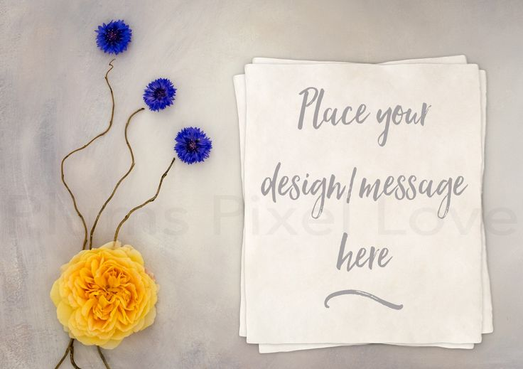 Styled Stock Photography mock up, instagram, Overlay text, nursery, yellow rose, blue flowers, watercolor paper, copy space, feminine SSP73 by plumspixellove on Etsy