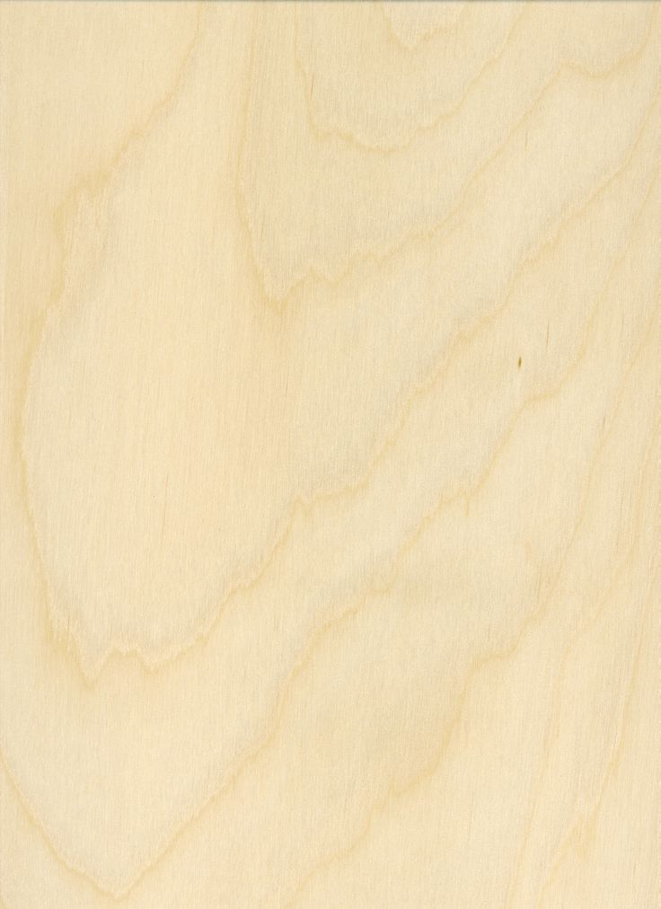 birchwood ply