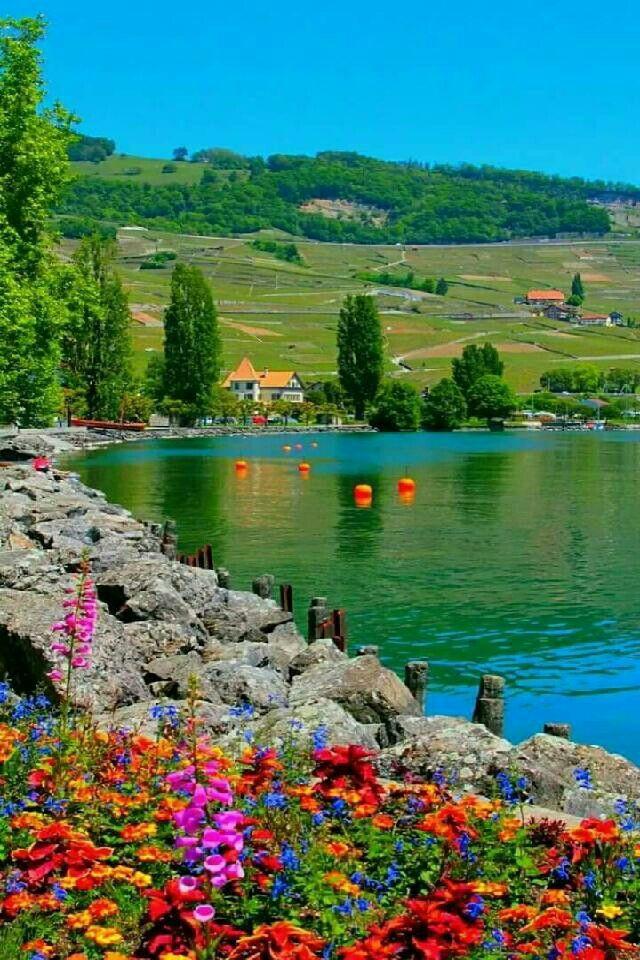 By Omran Aboali - google+   Beautiful places nature, Beautiful nature ...