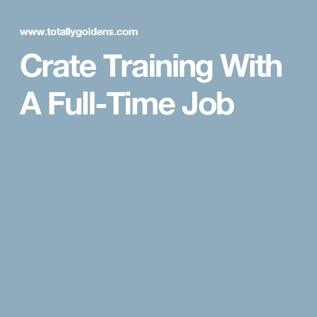 Crate Training With A Full-Time Job