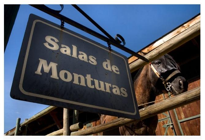 ¿Te gusta andar a caballo?, ven a conocer nuestras salas de montura y a practicar lo que más te gusta