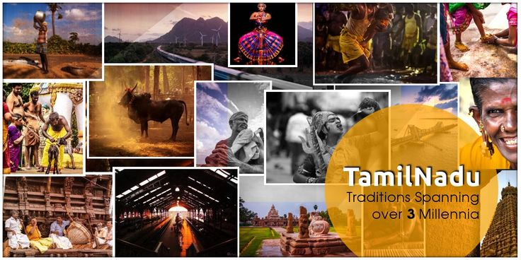 A Spectacular Visual Journey Through the Land of Temples and Traditions