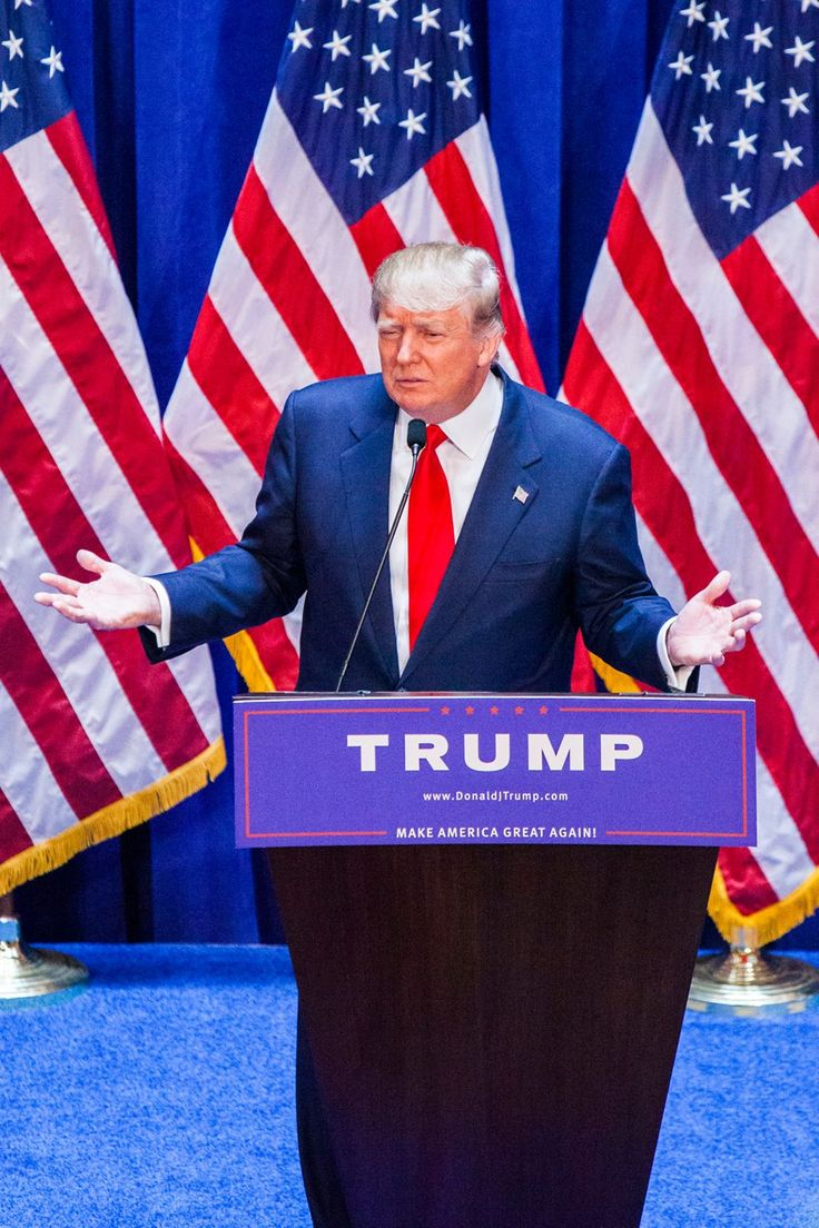 Google themes donald trump - The 47 Funniest Things About Donald Trump