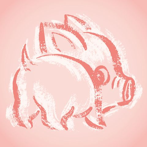 THIS PIG IS SO CUTE. I WANT THIS.