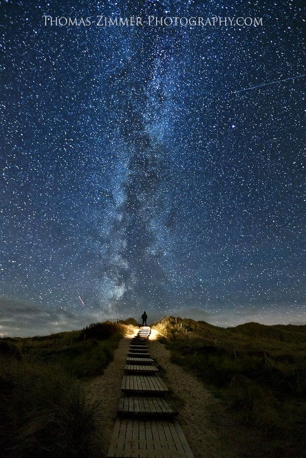 """""""heaven trail"""" In ireland, comes on June 10-18th every 2 years. Have to see this"""