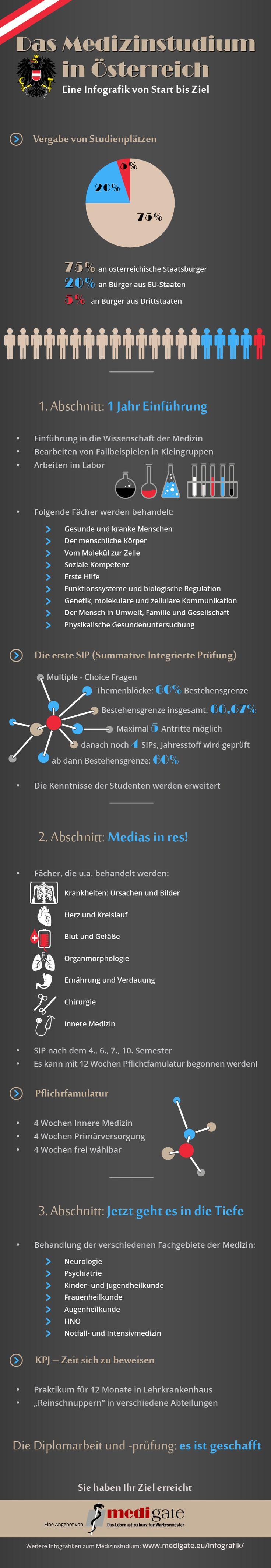Aufbau und Struktur des Studiums der Medizin in Österreich - einfach erklärt in deutscher Sprache.