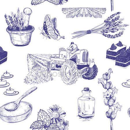 Vektorové bezešvé vzor květy levandule sada — Stocková ilustrace #67334123