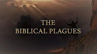 Video Documentaries: The Biblical Plagues