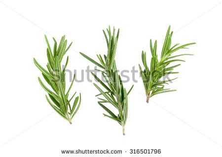 Rosemary essential oil - eases acid in the joints (please do not use while pregnant or if you have epilepsy)