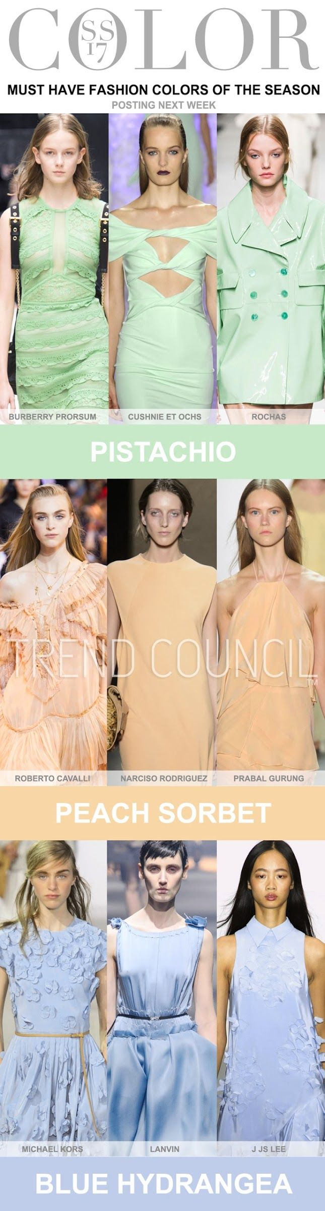 Colour trends 2017 ~ minikem forecast  TREND COUNCIL - WOMEN'S COLOR . S/S 2017 | FASHION VIGNETTE from bloglovin