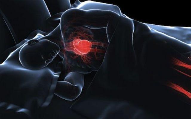 L'insonnia è nemica del tuo cuore L'obesità l'alterazione degli ormoni deputati al controllo dell'appetito e l'indeboliment sonno cuore colesia ibsa