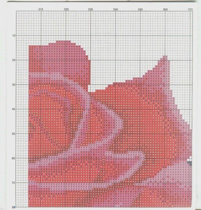 Rose rosso e nero 10