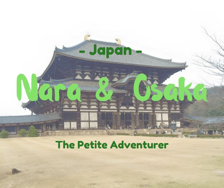 Spend some time in Japan's Kansai region. Pay a visit to the freely roaming deer in Nara Park while you visit the Todai-ji temple. Take a peek into New Year's rituals, meals, and more. www.thepetiteadventurer.com