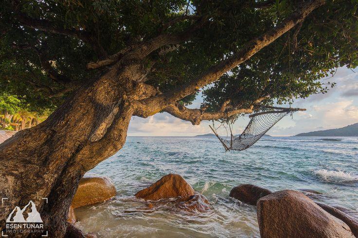 Sleeping on Water.. | by etunar