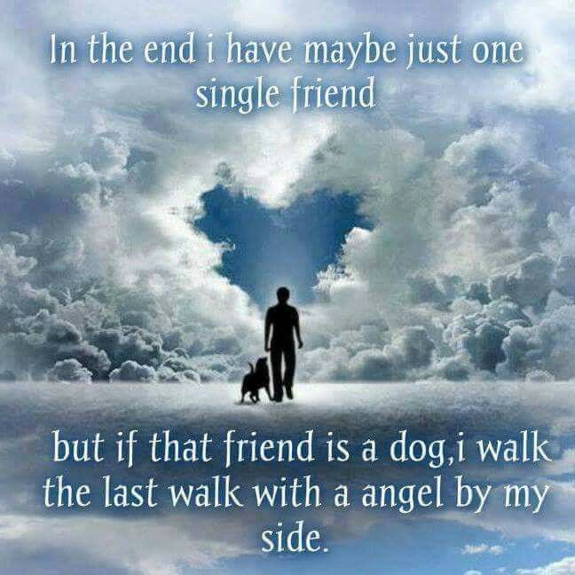 My dogs will always be remembered
