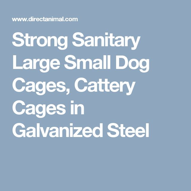 Strong Sanitary Large Small Dog Cages, Cattery Cages in Galvanized Steel
