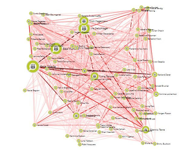 TEAMsCOM sociogram many employees in one team