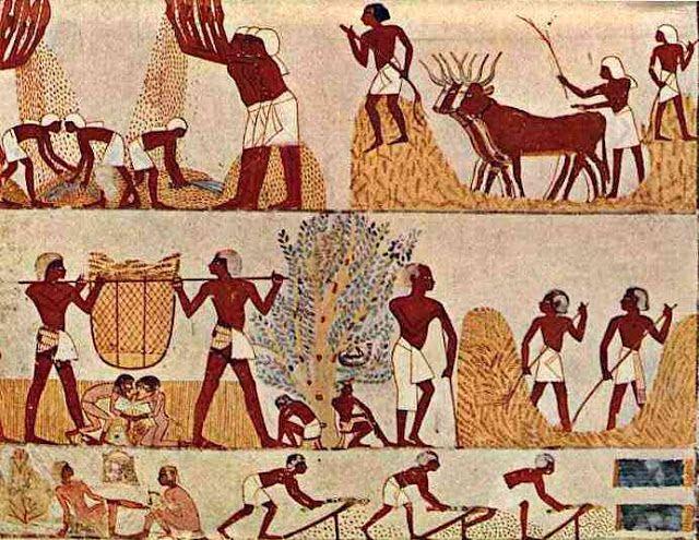 L Egypte Entre Guillemets Le Temps De La Moisson Dans L Ancienne Egypte Pa Egypte Ancienne Egypte Art Egyptien