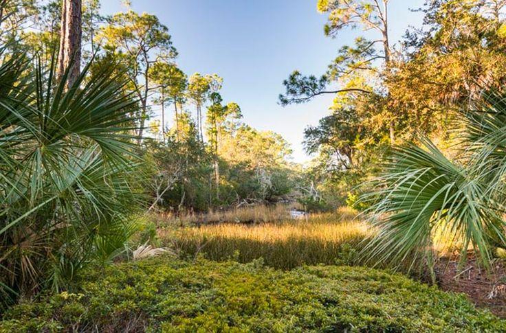 137 Blue Heron Pond Rd, Johns Island, SC 29455 | MLS #a090W00001NyA5AQAV - Zillow