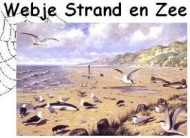 Webje Strand en Zee :: webje-strand.yurls.net
