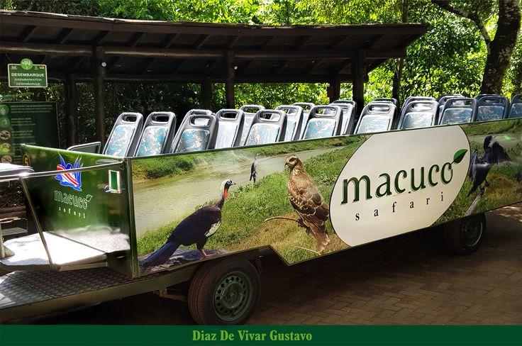 En el lado Brasilero para los visitantes de la naturaleza, Macuco safári ofrece tener contacto directo con la selva del parque nacional Do Iguaçu, en excursión en unos micros abiertos tipo safári donde ofrece acompañado por un guía que explica y traduce los detalles de las curiosidades y vistas y el turista puede contemplar la flora y la fauna local.