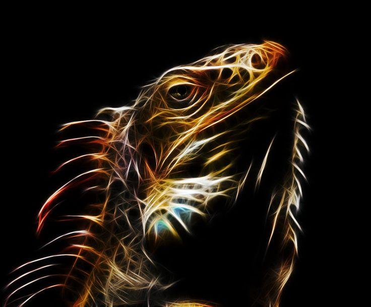 Resultado de imagem para iguana imagem fractal