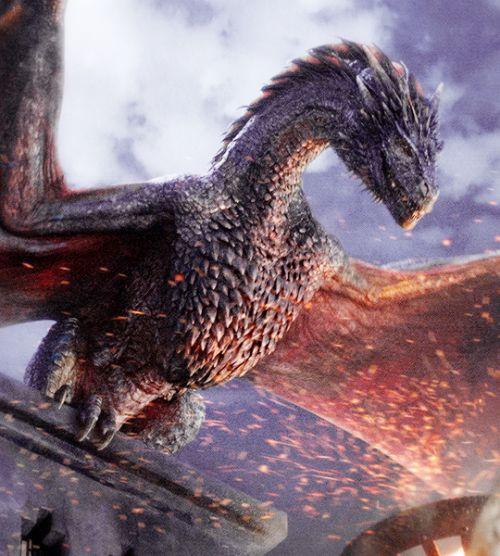 Drogon in Game of Thrones Season 5