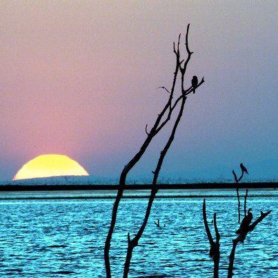 Magical Lake Kariba, Zimbabwe    http://zimbabwebookers.com/reservations/kariba-accommodation-zimbabwe/