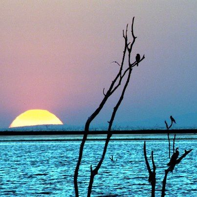 Magical Lake Kariba, Zimbabwe    http://zimbabwebookers.com/reservations/kariba-accommodation-zimbabwe/