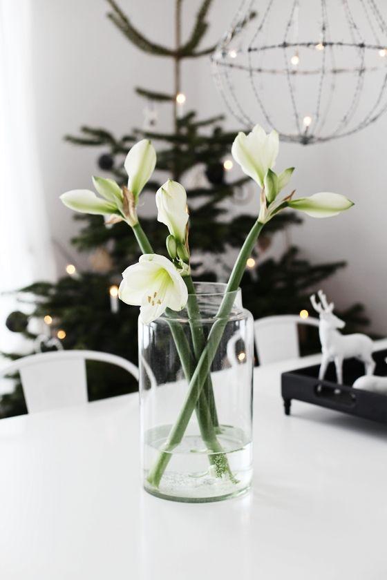MITT VITA HUS {Interior fragrance match: Jaye Niemi Ginger Lily + Water Fruits www.shopjayeniemi.com }