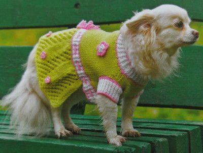 вязаная одежда для собак своими руками, вязаная одежда для собак, платье для собаки