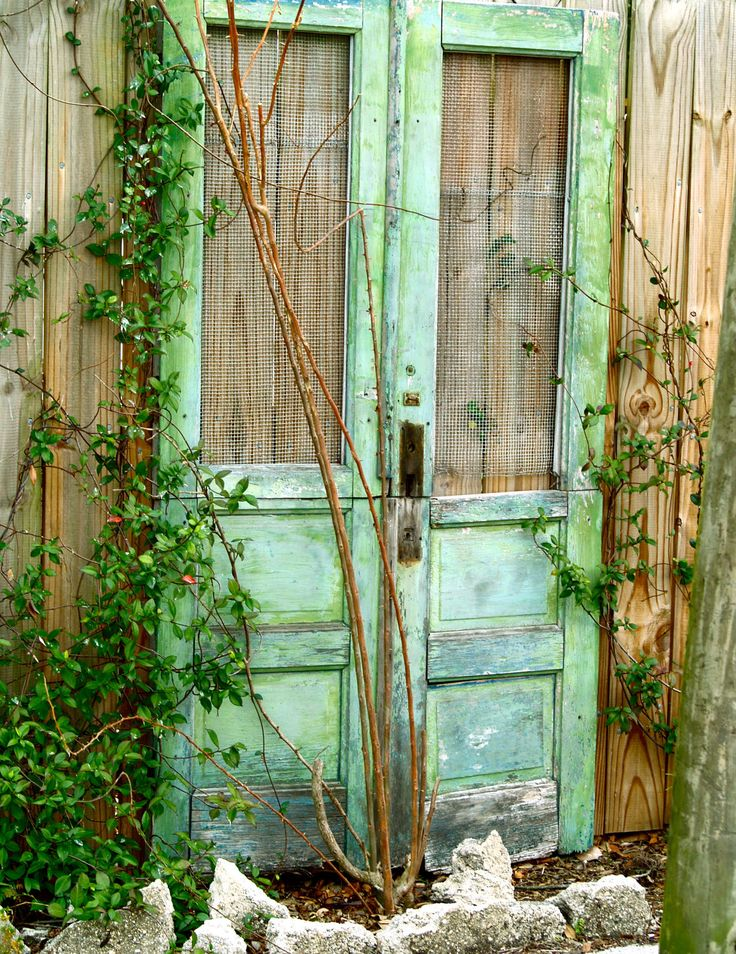 For the garden, love old doors and screen doors for vines, and