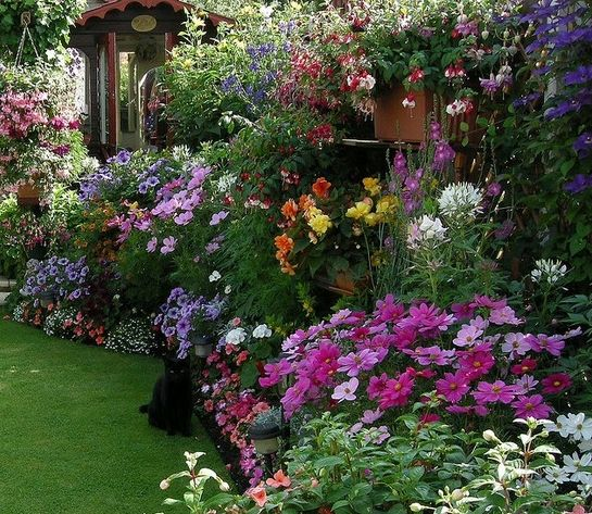 cottage garden eine der beliebtesten gartenformen garten pinterest bunte blumen. Black Bedroom Furniture Sets. Home Design Ideas