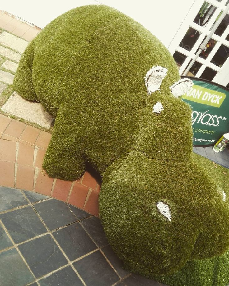 Come and meet Hippo at The Art Block this weekend. He is super friendly  #HiltonArtsFestival #Celtiskloof