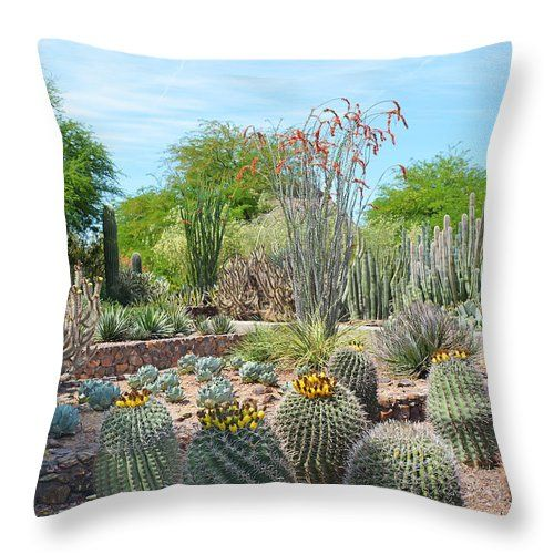 Dreamy Desert Cactus Throw Pillow for Sale by Aimee L Maher Visit ALMGallerydotcom.  Pillows are made from 100% spun polyester poplin fabric and add a stylish statement to any room. They are available in sizes from 14x14  to 26x26. Each pillow is printed on both sides (same image) and includes a concealed zipper and removable insert (if selected) for easy cleaning. Be sure to use the Cropping Tool when ordering pillows to ensure the photo is centered to your liking